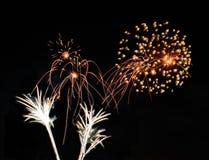 Πραγματικά απομονωμένα πυροτεχνήματα, σχέδιο λουλουδιών Στοκ Εικόνες