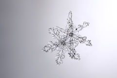Πραγματικά φυσικά snowflakes σε μια υγρή μακρο φωτογραφία γυαλιού Στοκ Εικόνα