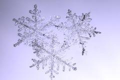 Πραγματικά φυσικά snowflakes στη μακρο φωτογραφία γυαλιού Στοκ φωτογραφία με δικαίωμα ελεύθερης χρήσης
