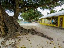 Πραγματικές Μαλδίβες Στοκ Εικόνες