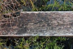 Πραγματική φυσική ξύλινη σύσταση Στοκ φωτογραφία με δικαίωμα ελεύθερης χρήσης