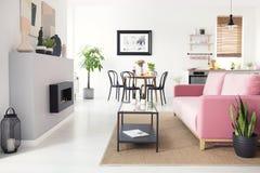 Πραγματική φωτογραφία του ανοιχτού χώρου οριζόντια εσωτερική με το ρόδινο καναπέ βελούδου, FI στοκ εικόνες
