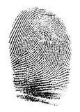 Πραγματικό δακτυλικό αποτύπωμα Στοκ εικόνες με δικαίωμα ελεύθερης χρήσης
