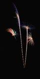 Πραγματικό σχέδιο πυροτεχνημάτων, λουλουδιών ή δέντρων καρύδων Στοκ Εικόνα