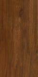 Πραγματικό φυσικό ξύλινο υπόβαθρο σύστασης και επιφάνειας Στοκ Εικόνες