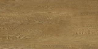 Πραγματικό φυσικό ξύλινο υπόβαθρο σύστασης και επιφάνειας Στοκ Εικόνα