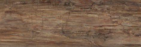 Πραγματικό φυσικό ξύλινο υπόβαθρο σύστασης και επιφάνειας Στοκ φωτογραφία με δικαίωμα ελεύθερης χρήσης