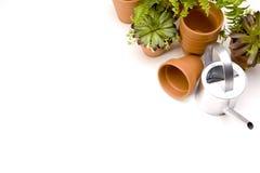 πρακτικά εργαλεία κηπουρικής έννοιας Στοκ Φωτογραφίες