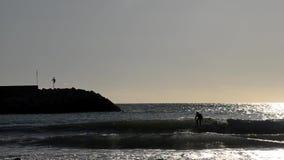 Πρακτική ατόμων που κάνει σερφ κοντά στο λιμάνι απόθεμα βίντεο