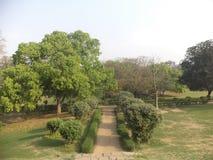 Πρασινάδα: Κήπος Lodi στοκ εικόνες