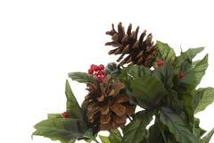 πρασινάδα Χριστουγέννων Στοκ φωτογραφίες με δικαίωμα ελεύθερης χρήσης