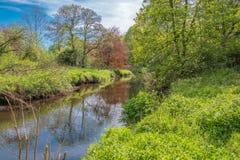 Πρασινάδα Lucious πάρκων Scotlands και ένας ευγενής ρέοντας ποταμός με τις αντανακλάσεις στο νερό στοκ φωτογραφία με δικαίωμα ελεύθερης χρήσης