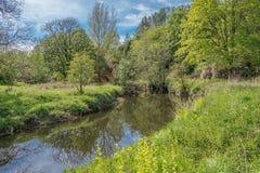 Πρασινάδα Lucious πάρκων Scotlands και ένας ευγενής ρέοντας ποταμός με τις αντανακλάσεις στο νερό στοκ φωτογραφία