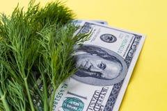 Πρασινάδα: άνηθος και εκατό δολάρια στο κίτρινο υπόβαθρο, οριζόντιο Στοκ Φωτογραφίες