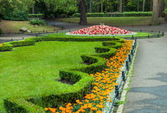 Πρασινάδα πάρκων πόλεων Στοκ φωτογραφίες με δικαίωμα ελεύθερης χρήσης