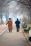 Πρεσβύτεροι σε ένα περπάτημα πάρκων στοκ φωτογραφίες