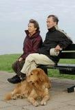 πρεσβύτερος σκυλιών ζευγών Στοκ Εικόνες