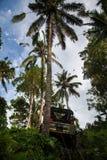 πρεσών Ινδονησία - 7 Μαρτίου 2013 SUV στην τροπική ζούγκλα Στοκ φωτογραφίες με δικαίωμα ελεύθερης χρήσης