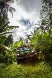 πρεσών Ινδονησία - 7 Μαρτίου 2013 SUV στην τροπική ζούγκλα Στοκ Εικόνες
