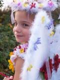 πριγκήπισσα νεράιδων Στοκ φωτογραφίες με δικαίωμα ελεύθερης χρήσης