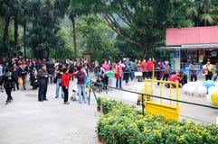 Πριν από το κινεζικό νέο έτος του τοπίου πάρκων Yuexiu Στοκ Εικόνες