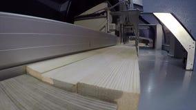 Πριονίζοντας μηχανή για έναν ξύλινο φραγμό, βιομηχανική εσωτερική, σύγχρονη μηχανή ξυλουργικής, λειτουργώντας μηχανή, τέμνουσα μη απόθεμα βίντεο