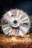 πριονιστήριο Τα ισχυρά κυκλικά πριόνια είδαν ένα κούτσουρο στοκ φωτογραφία με δικαίωμα ελεύθερης χρήσης