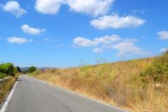 Προαστιακός δρόμος με την κίτρινη ξηρά χλόη το καλοκαίρι στοκ φωτογραφίες με δικαίωμα ελεύθερης χρήσης
