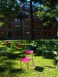 προαύλιο Χάρβαρντ εδρών μόν&omic Στοκ Εικόνες