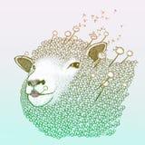 Προβατίνα πικραλίδων άνοιξη απεικόνιση αποθεμάτων