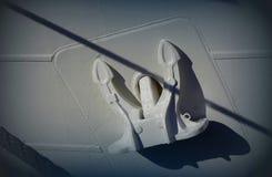 προγόνων Άσπρη ανασκόπηση Κλείστε επάνω το λευκό στοκ εικόνες με δικαίωμα ελεύθερης χρήσης