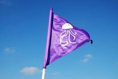 Προειδοποίηση σημαιών για τη μέδουσα στη θάλασσα Στοκ Εικόνες