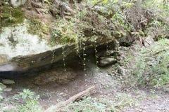 Προεξοχή βράχου με τις αμπέλους στοκ φωτογραφίες με δικαίωμα ελεύθερης χρήσης