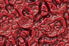 προερχόμενες από ιό μολύνσεις Στοκ Φωτογραφίες