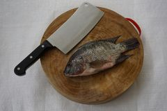 Προετοιμάστε μαγειρεύοντας tilapia του Νείλου Στοκ φωτογραφία με δικαίωμα ελεύθερης χρήσης