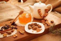 Προετοιμάστε τα νόστιμα μπισκότα οικογενειακά καρύδια έννοιας σύνθεσης μπουλονιών στοκ εικόνες με δικαίωμα ελεύθερης χρήσης
