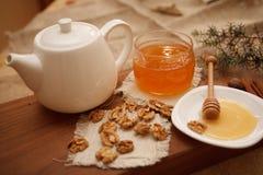 Προετοιμάστε τα νόστιμα μπισκότα οικογενειακά καρύδια έννοιας σύνθεσης μπουλονιών Στοκ φωτογραφία με δικαίωμα ελεύθερης χρήσης