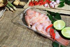 Προετοιμαμένος για το μαγείρεμα της ταϊλανδικής πικάντικης και ξινής σούπας με τα ψάρια, η ταϊλανδική γλώσσα είναι ο Tom Yum Pha Στοκ Φωτογραφίες