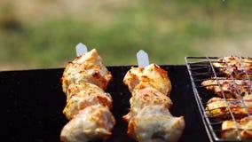 Προετοιμασία ενός shish kebab στην πυρκαγιά απόθεμα βίντεο