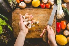 Προετοιμασία της διαδικασίας μαγειρέματος με τα λαχανικά εποχής στοκ φωτογραφία με δικαίωμα ελεύθερης χρήσης