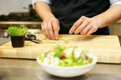 Προετοιμασία της σαλάτας Στοκ φωτογραφία με δικαίωμα ελεύθερης χρήσης