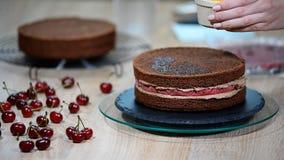 Προετοιμασία του κέικ σοκολάτας με τα κεράσια Το κέικ είναι ενυδατωμένο με το γλυκό σιρόπι για την υγρασία απόθεμα βίντεο