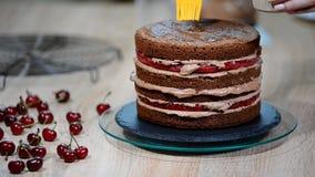 Προετοιμασία του κέικ σοκολάτας με τα κεράσια Το κέικ είναι ενυδατωμένο με το γλυκό σιρόπι για την υγρασία φιλμ μικρού μήκους
