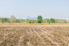 Προετοιμασία του καλλιεργημένου χώματος για τη γεωργία στοκ εικόνα