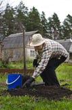 Προετοιμασία των κρεβατιών για τα λαχανικά Στοκ Εικόνες