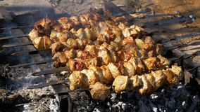 Προετοιμασία Shish Kebabs στα οβελίδια πέρα από μια πυρκαγιά στη φύση κίνηση αργή απόθεμα βίντεο