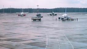 Προετοιμασίες αεροπλάνων για την τροφή και την πτήση στον αερολιμένα Τρία αεροσκάφη με το αεροπλάνο που προσγειώνεται στο υπόβαθρ απόθεμα βίντεο