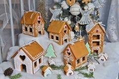 προετοιμασίες σπιτιών διακοπών τοποθέτησης υαλοπινάκων μελοψωμάτων Χριστουγέννων που βάζουν τη γυναίκα δέντρων στοκ εικόνες με δικαίωμα ελεύθερης χρήσης