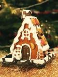 προετοιμασίες σπιτιών διακοπών τοποθέτησης υαλοπινάκων μελοψωμάτων Χριστουγέννων που βάζουν τη γυναίκα δέντρων Στοκ Εικόνα