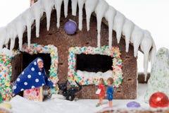 προετοιμασίες σπιτιών διακοπών τοποθέτησης υαλοπινάκων μελοψωμάτων Χριστουγέννων που βάζουν τη γυναίκα δέντρων Στοκ φωτογραφία με δικαίωμα ελεύθερης χρήσης